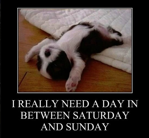 I agree 110%. Can we make away Mondays?